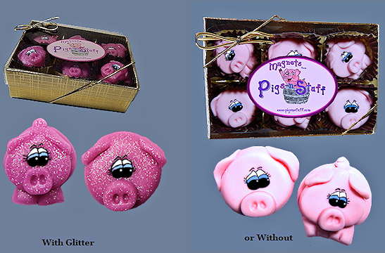 pig magnets boxed